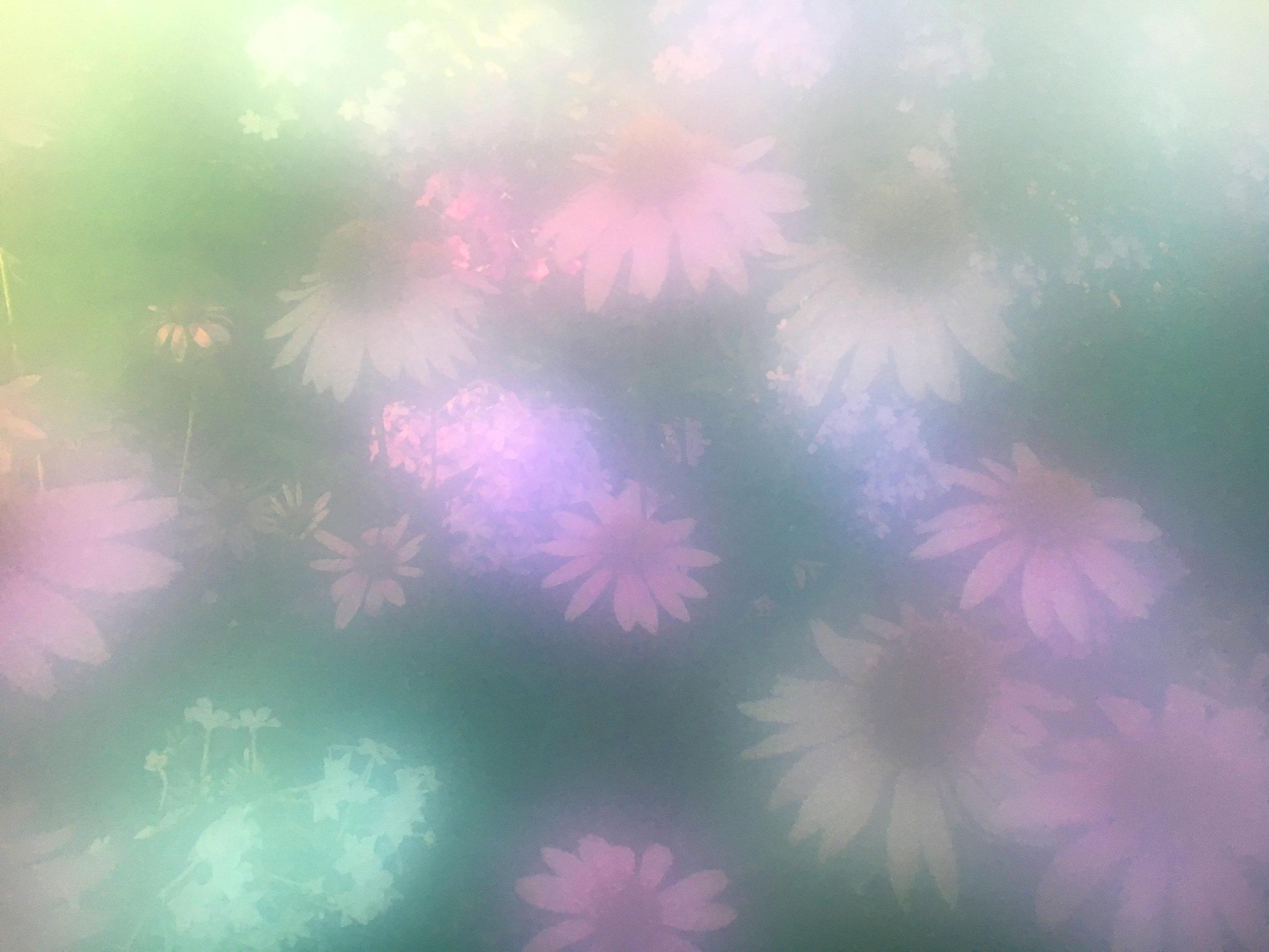 filter8.jpg