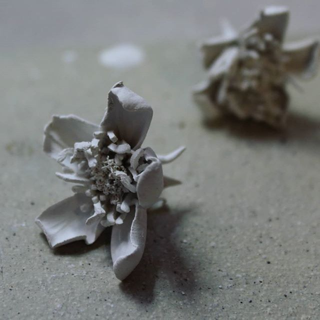 It's been a very long time since I posted anything on here, so here's a bramble flower for one of two new pieces I'm working on for Make Hauser & Wirth @make_hwsomerset this summer.