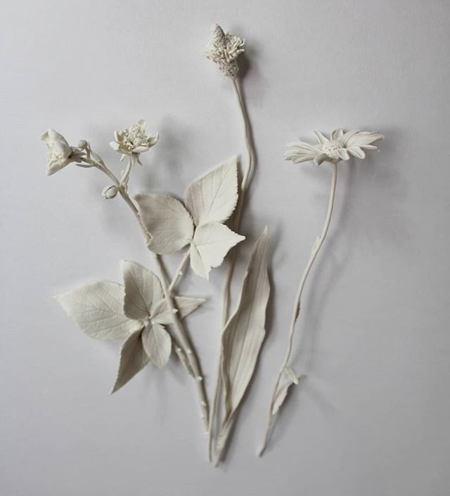 Here's the bramble finished with some friends... This new piece 'Collection' will sit the drawer of one of @davidgatesfurniture cabinets in the Hauser and Wirth Make Gallery in Somerset @make_hwsomerset. The plants were collected on a walk trying and failing to break into an abandoned concrete works in Sussex, inspired by David being inspired by industrial buildings. The show opens on August 16th and runs until 18th October.