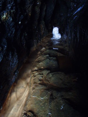 Cave reve.jpg