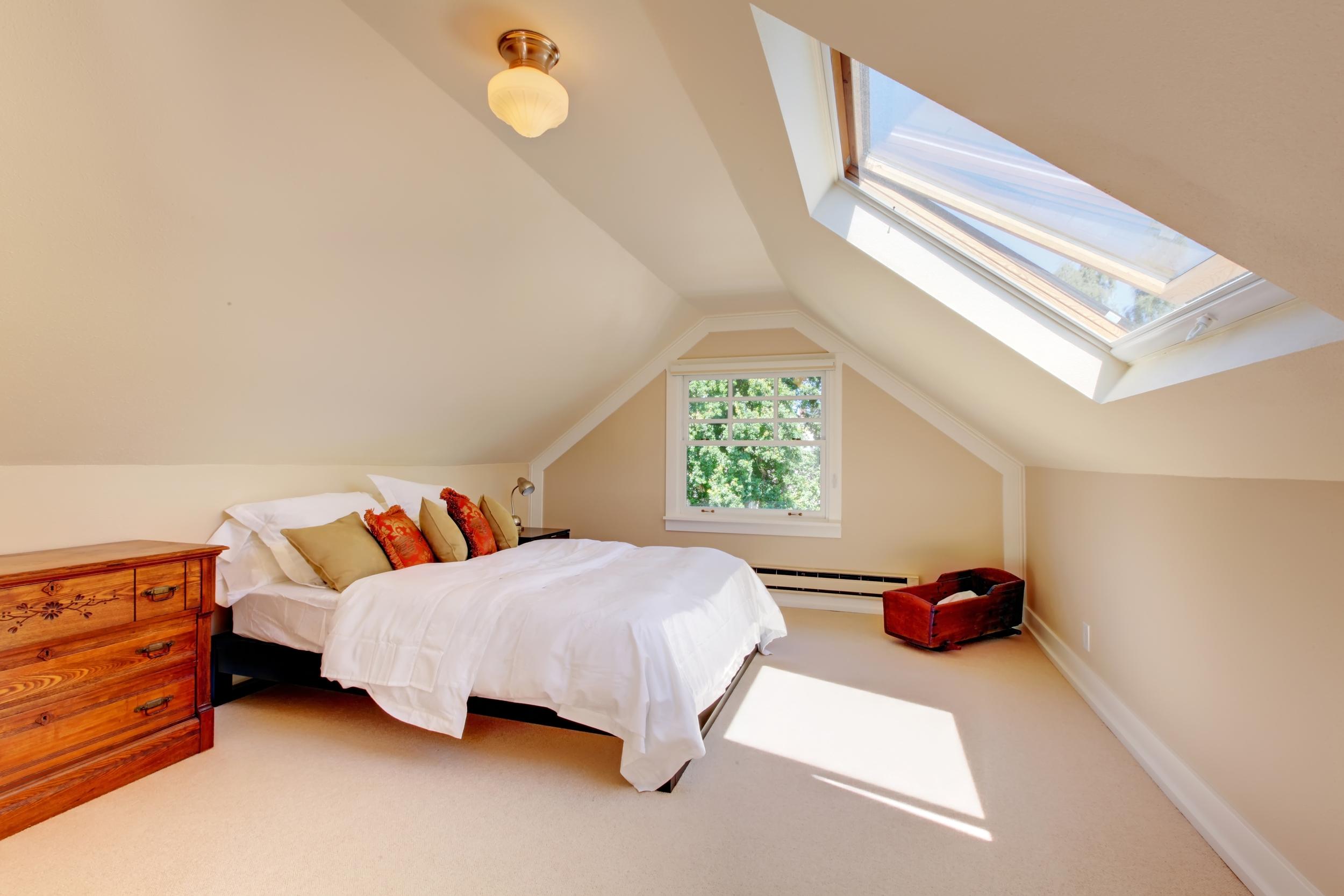 Velux loft windows