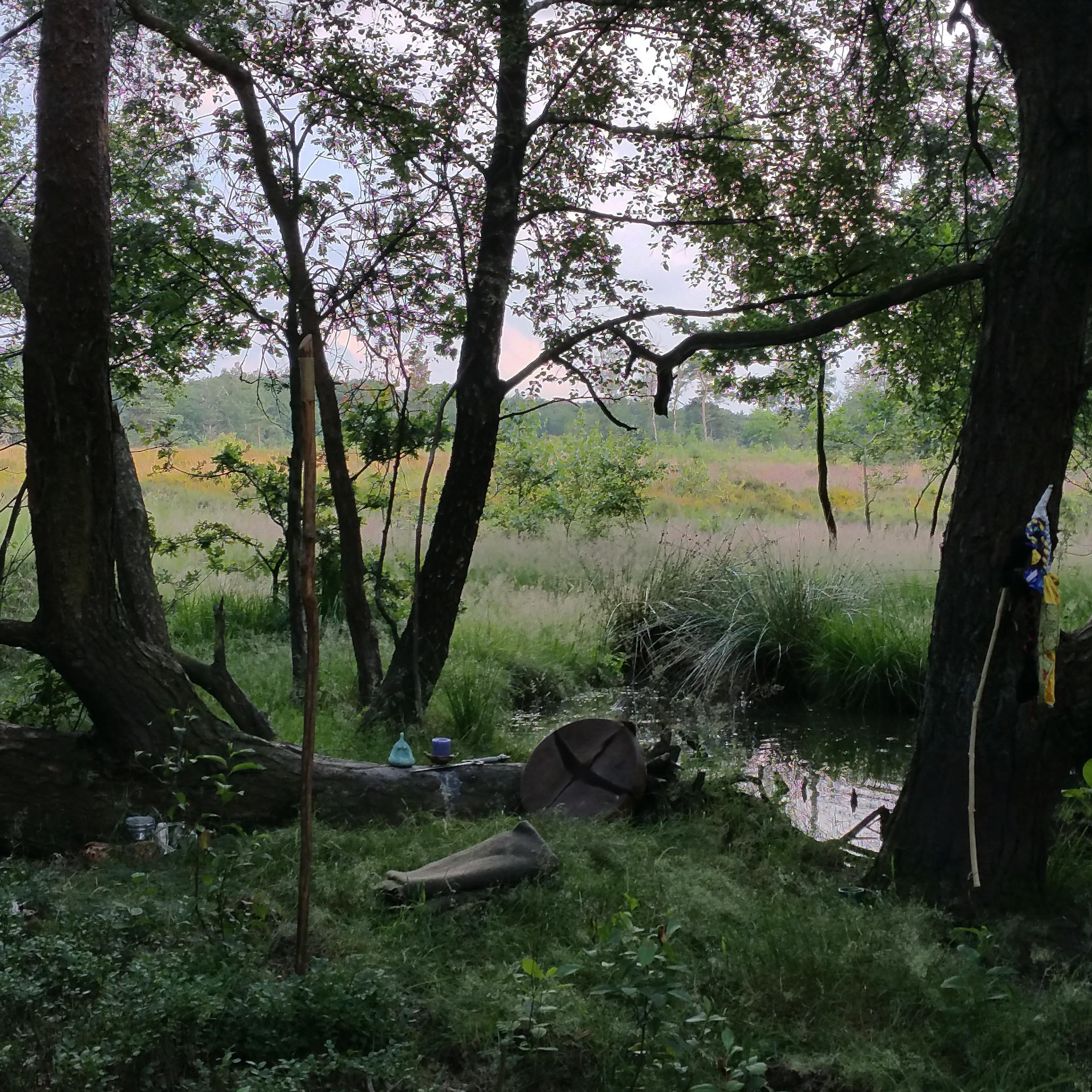 Landmagieritueel op de rand van bos, heide en water