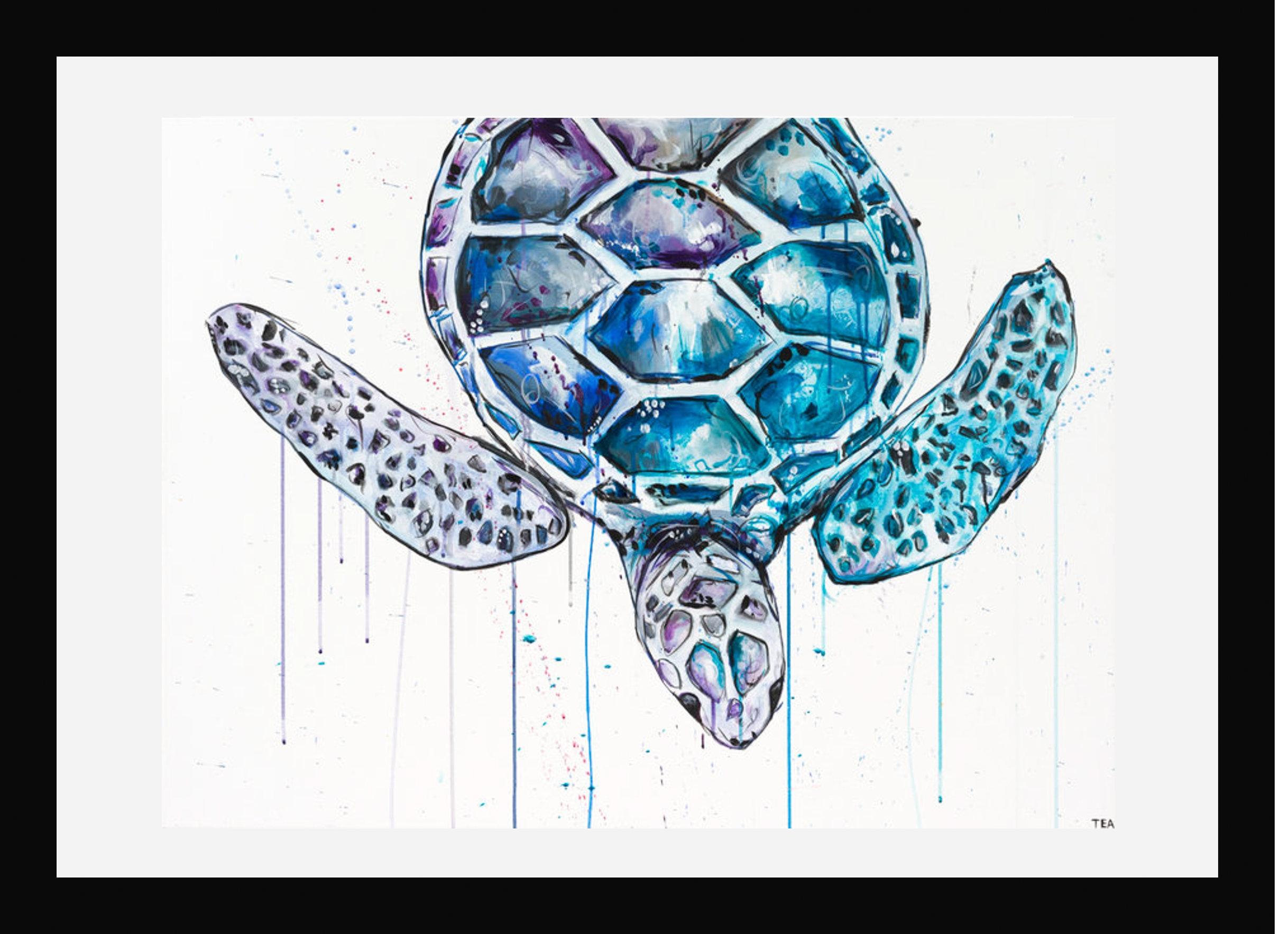 Turtle_Simple Frame.jpg