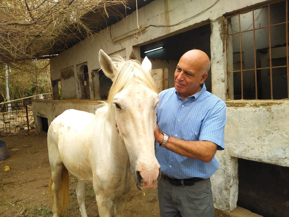 abandoned Police horse Djibouti with Mr. Sari Rasas.jpg