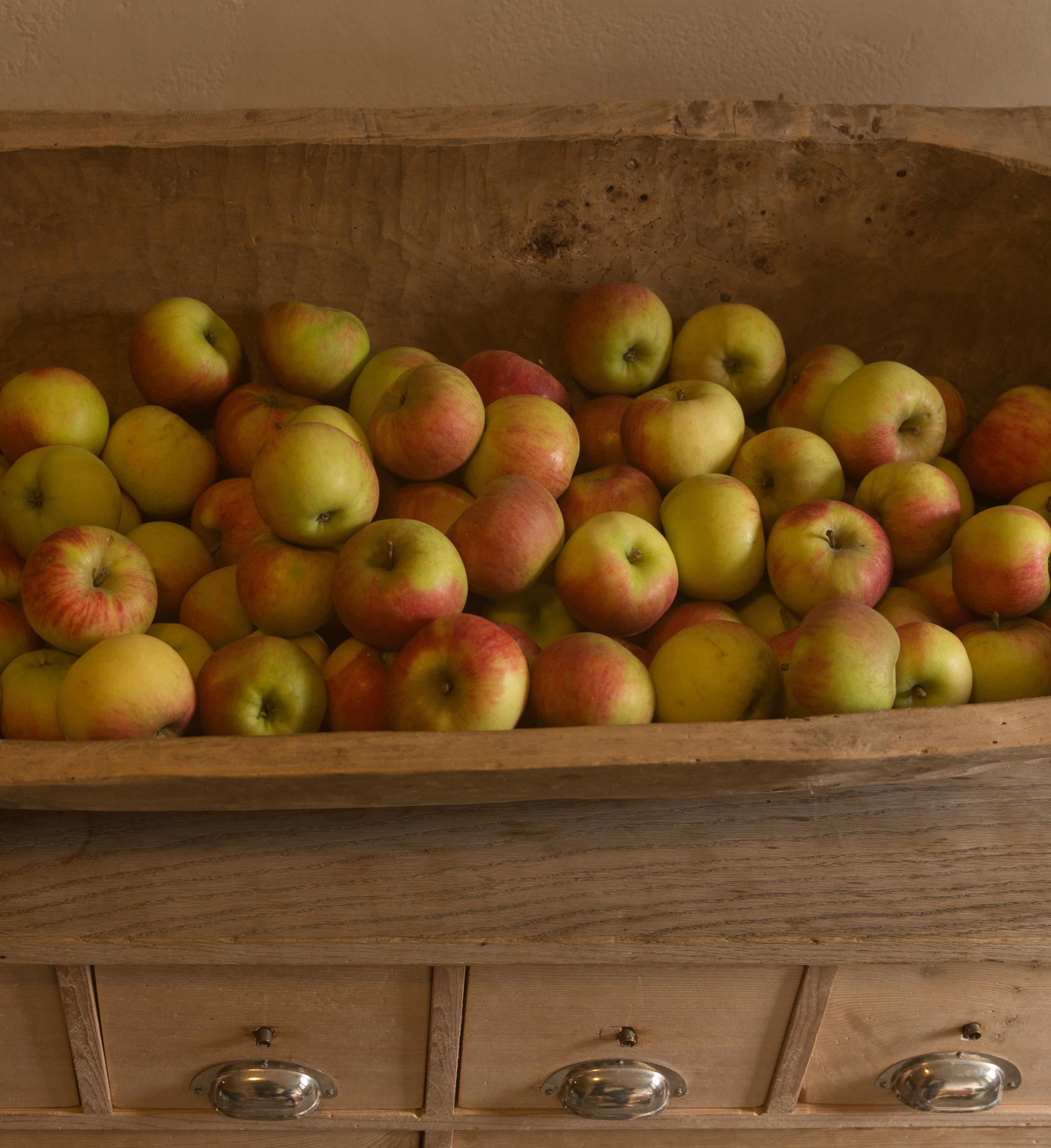 Knackige Elstar Äpfel vom Bodensee.