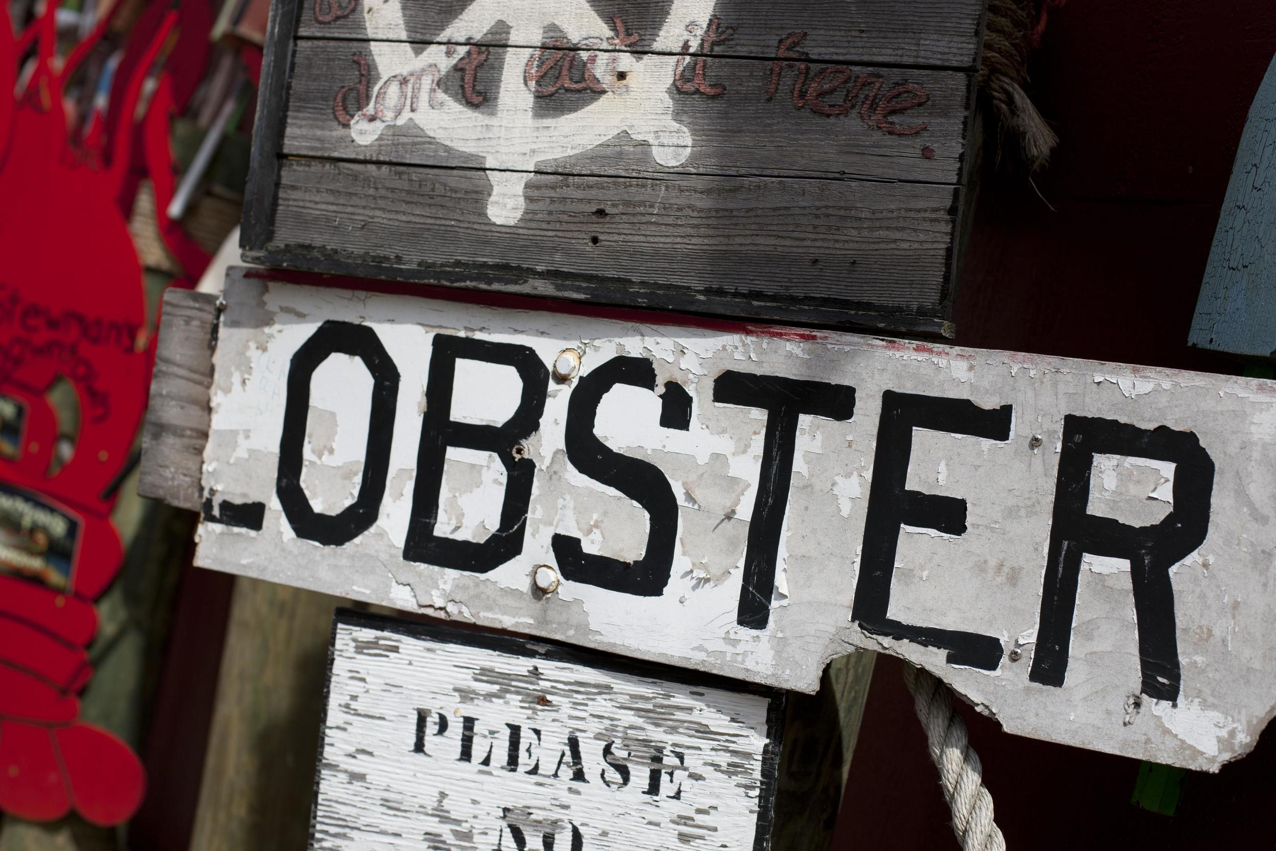 Detail Shot_Lobster Sign(2)_13854_high.jpg