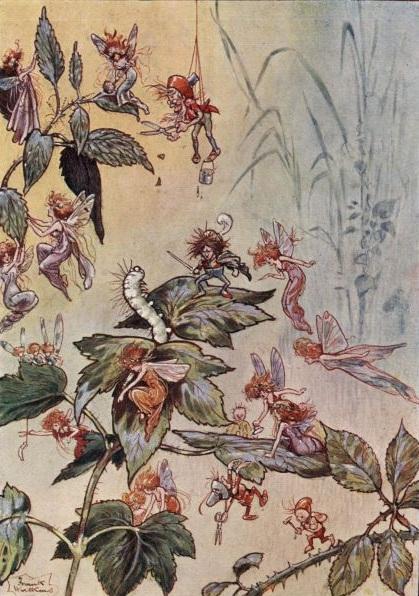 leaf-fairies.jpg