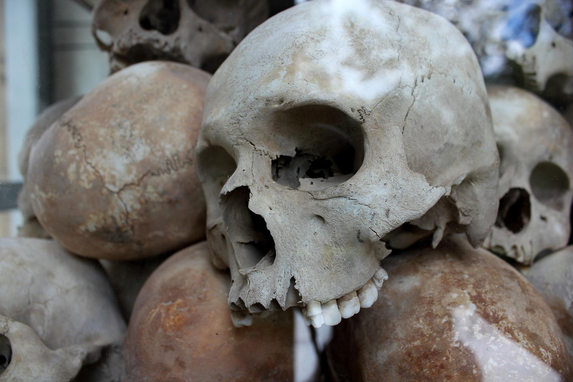 skulls-1433178_1920.jpg