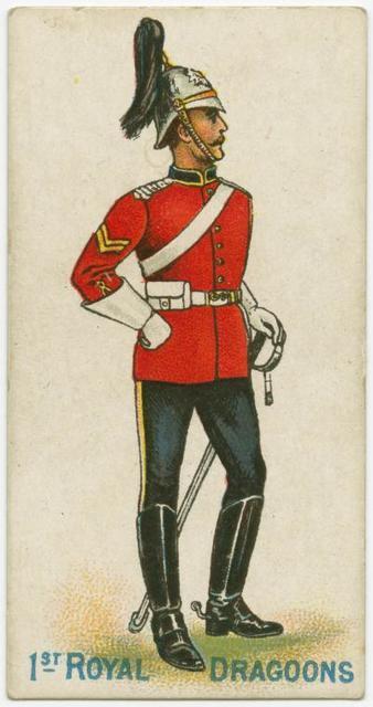 1st Royal Dragoons..jpg