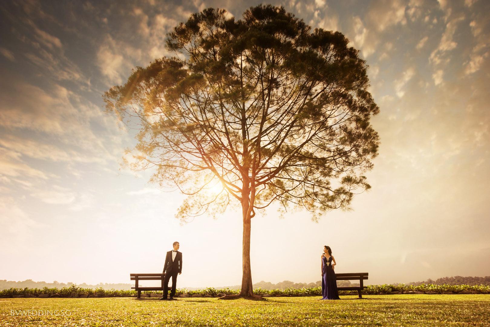 Pre-wedding Photoshoot at Upper Seletar