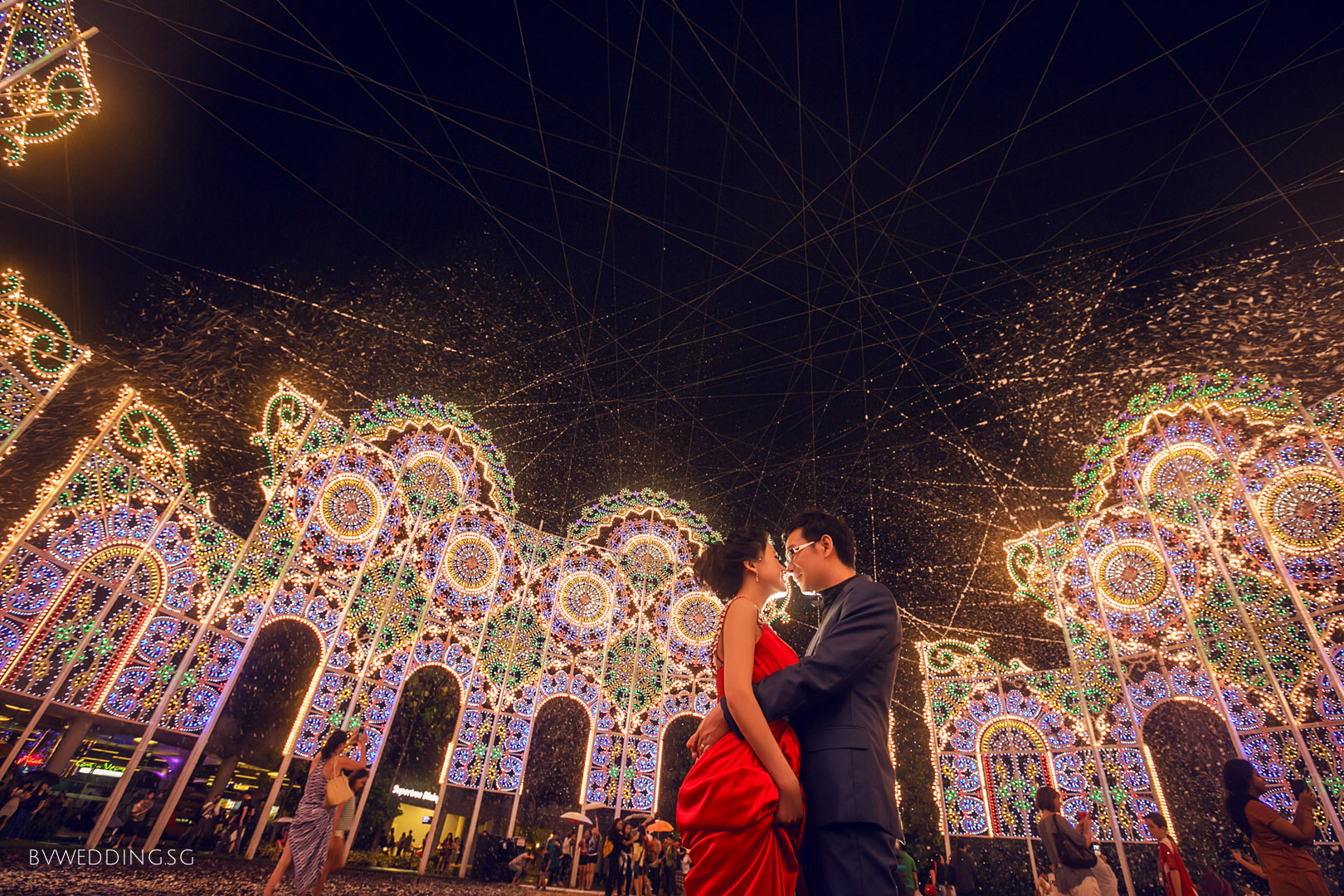 pre-wedding Photoshoot at Gardens By the Bay