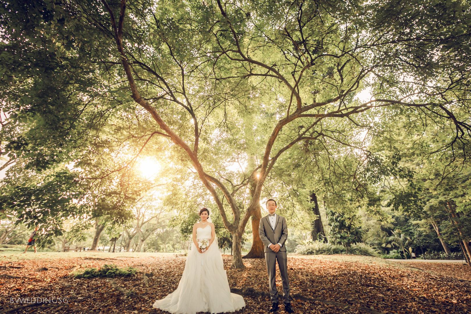 Pre-wedding Photoshoot at Botanic GardensPre-wedding Photoshoot at Botanic Gardens