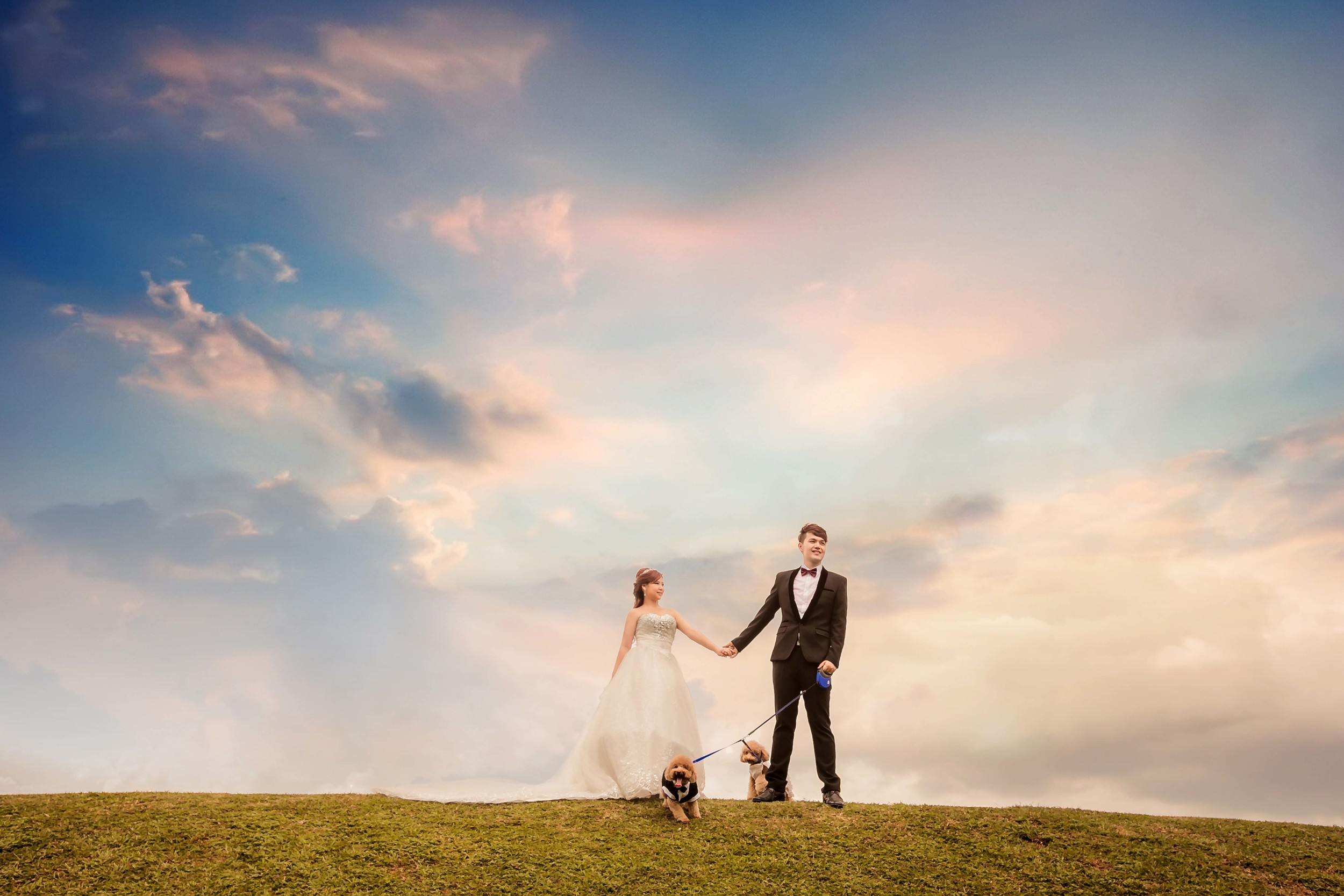 Pre-wedding-Photography-pet-dog