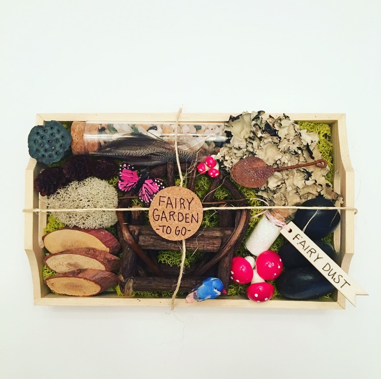 Fairy Garden To Go Kit
