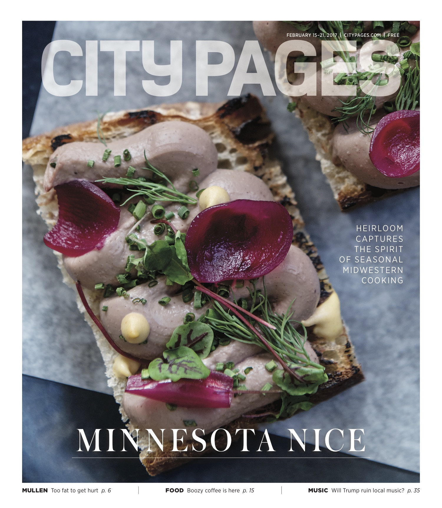 City Pages - Feb. 2017 Cover Story