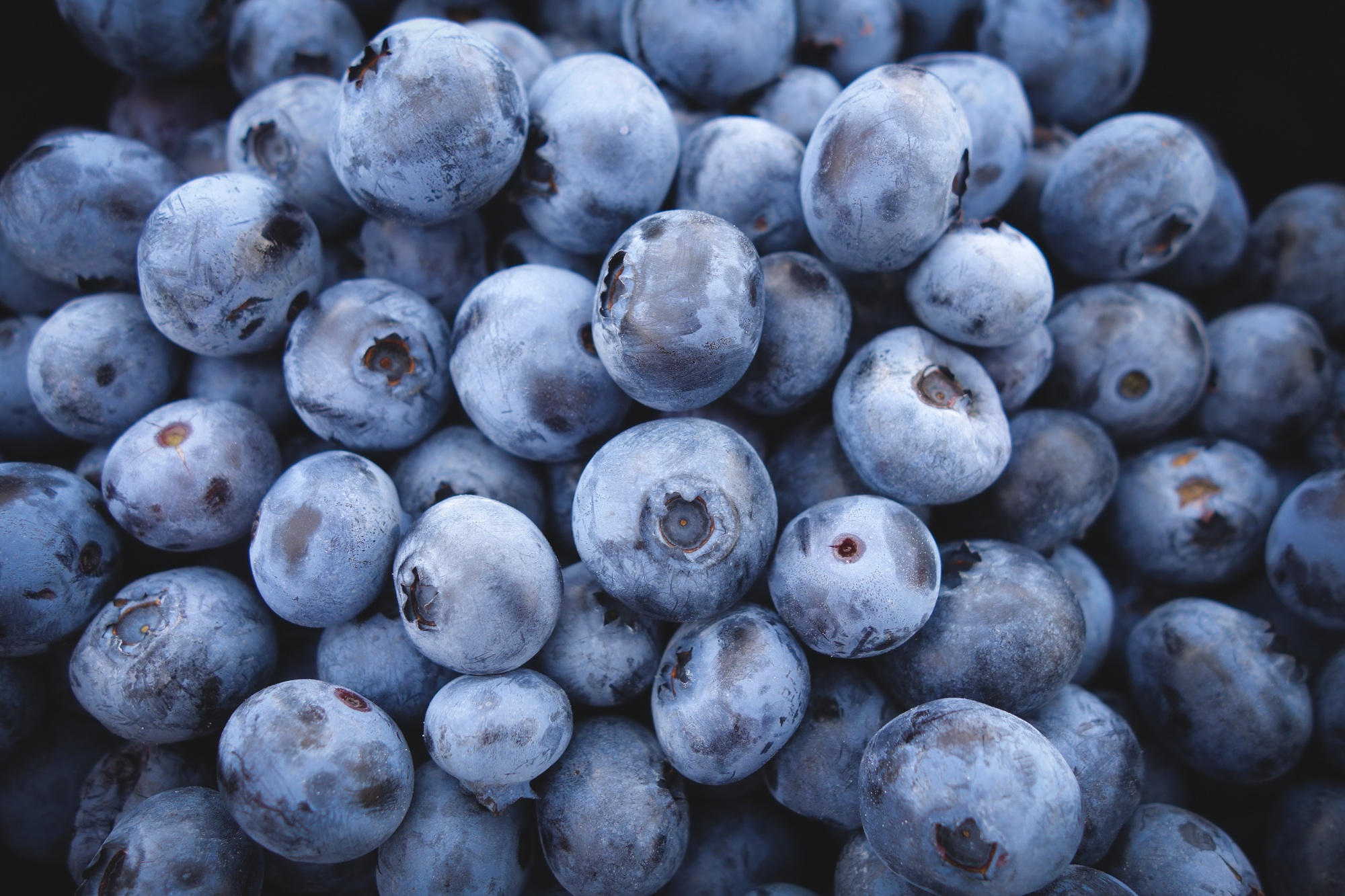 6 Reasons You Should Be Eating Blueberries Daily