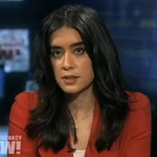 nermeen shaikh  is a broadcast news producer and co-host aT democracy now! mentorship beat: Consultant, film.