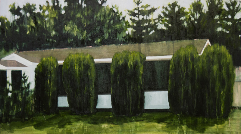 """Five bushes (overgrown) , 2014, Oil on canvas, 27"""" x 48"""""""