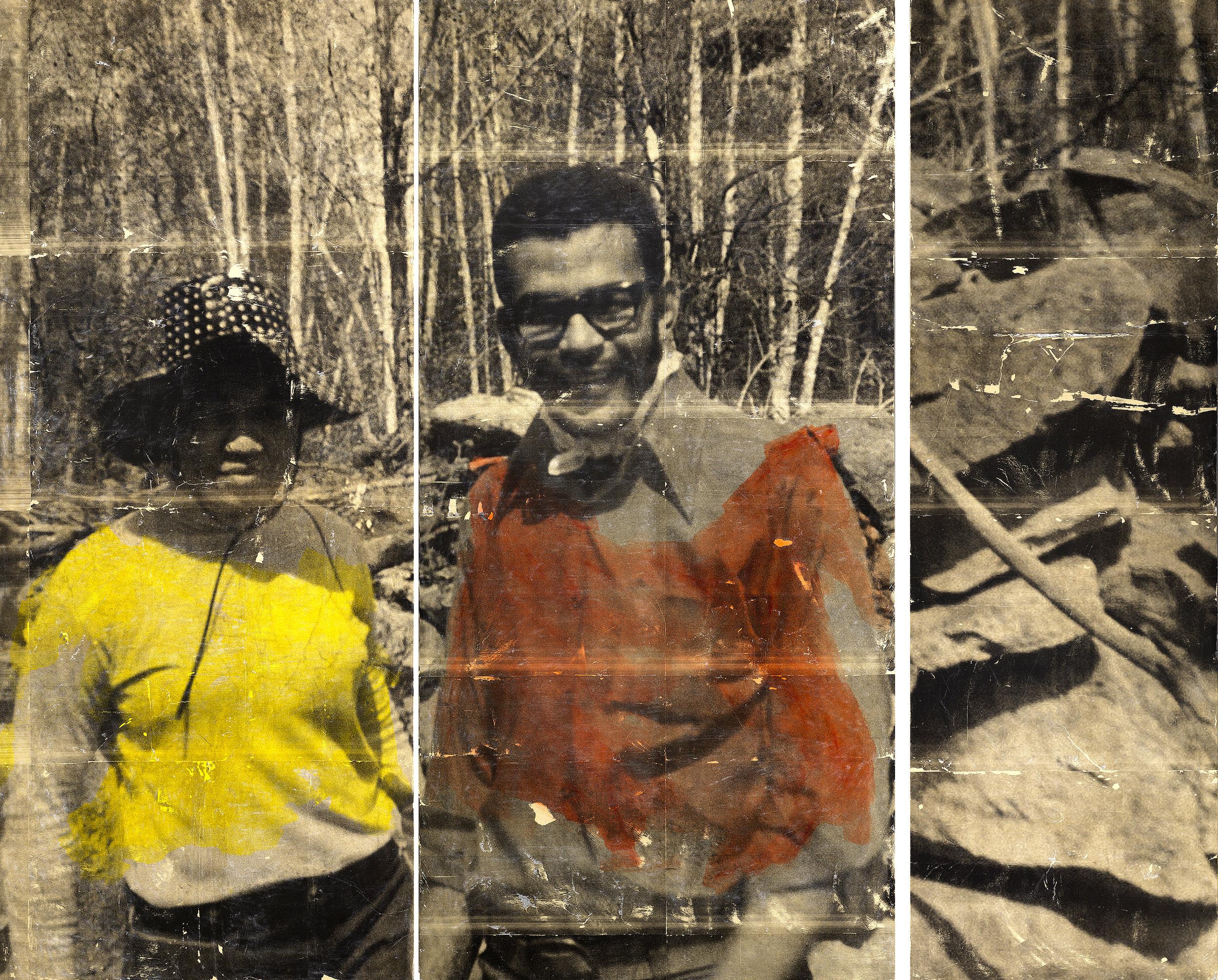 Hikinh Black Creek , 2017, acrylic, photo-based gel transfer on wood