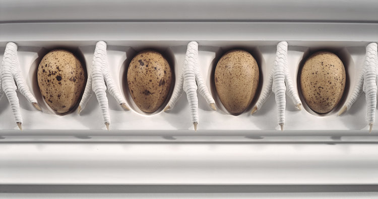 Sacrificial Ornament ,  Ovo and Claw Entablature , 1990, 60 x 12 inches, turkey eggs, chicken claws, plaster (detail)