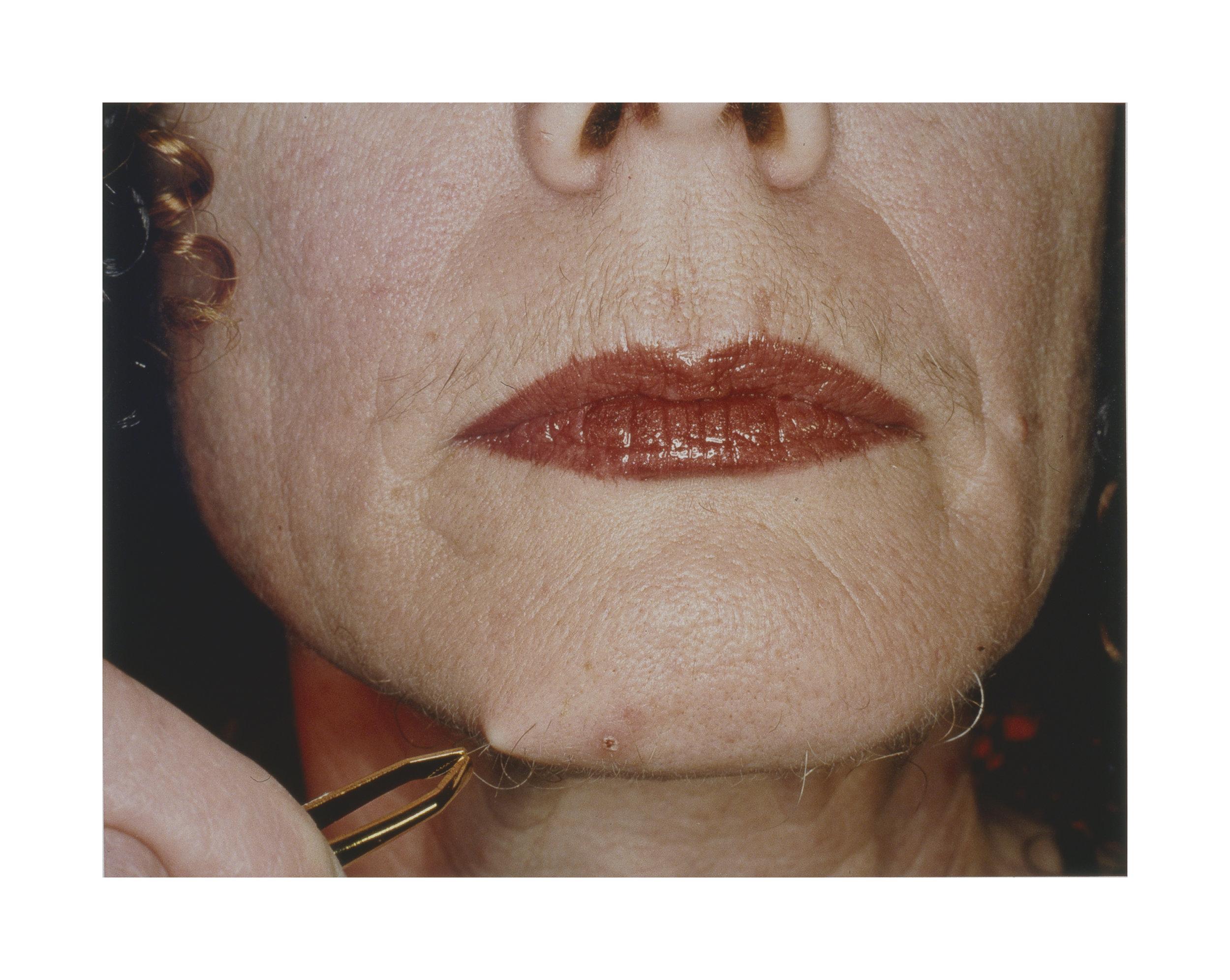 Pluck #2 , 2001, series: Beauty at A Proper Distance 2001-05  82.55 x 101.6 cm, digital chromogenic print