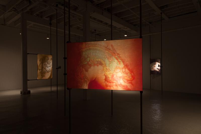 A Bestiary (dragon)  (installation), 2013, 16mm film transferred to digital