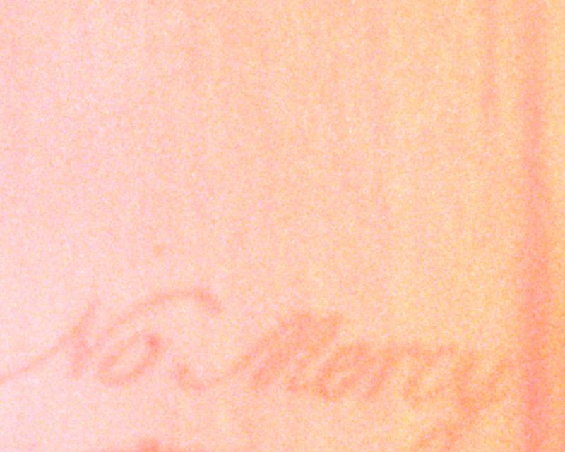 No Mercy (Film Still from A Bestiary: Hummingbird),  2013, 22 x 27.5 inches, archival inkjet print