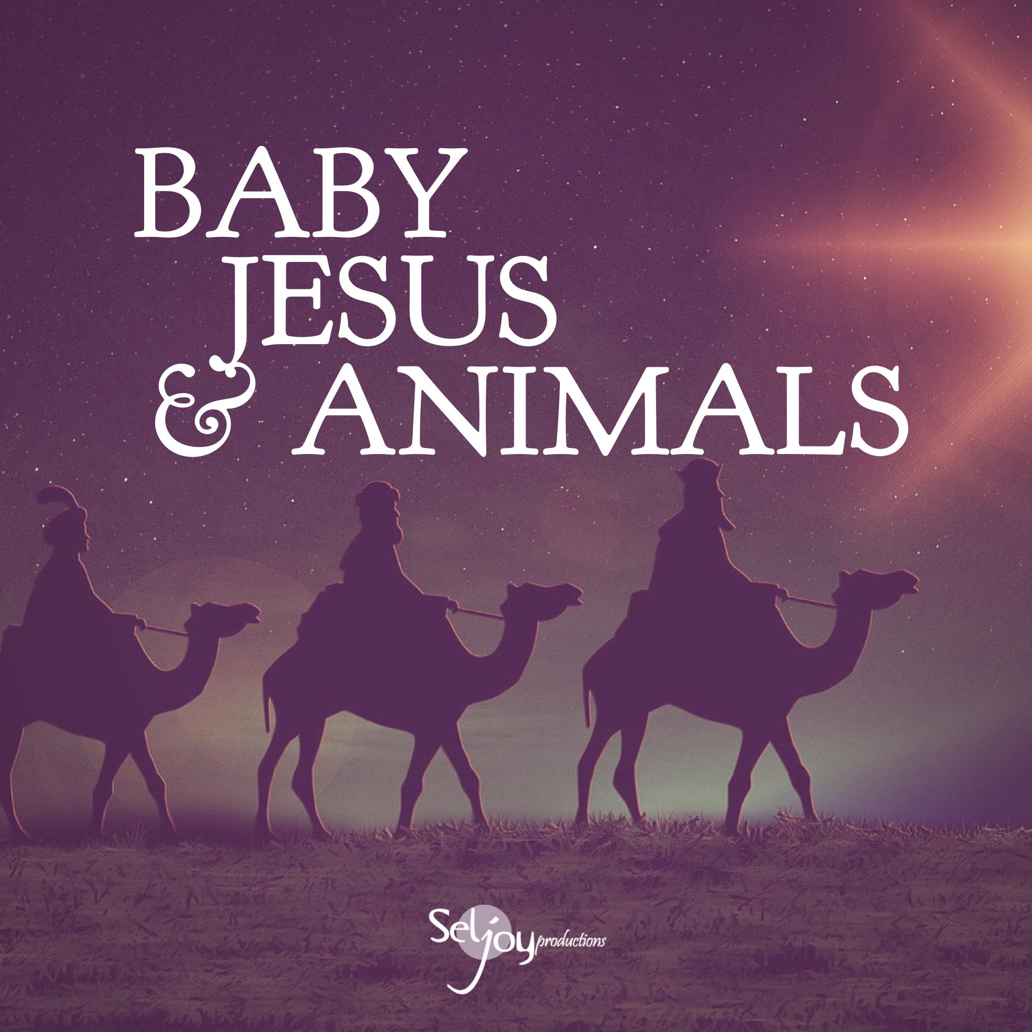 Baby Jesus & Animals