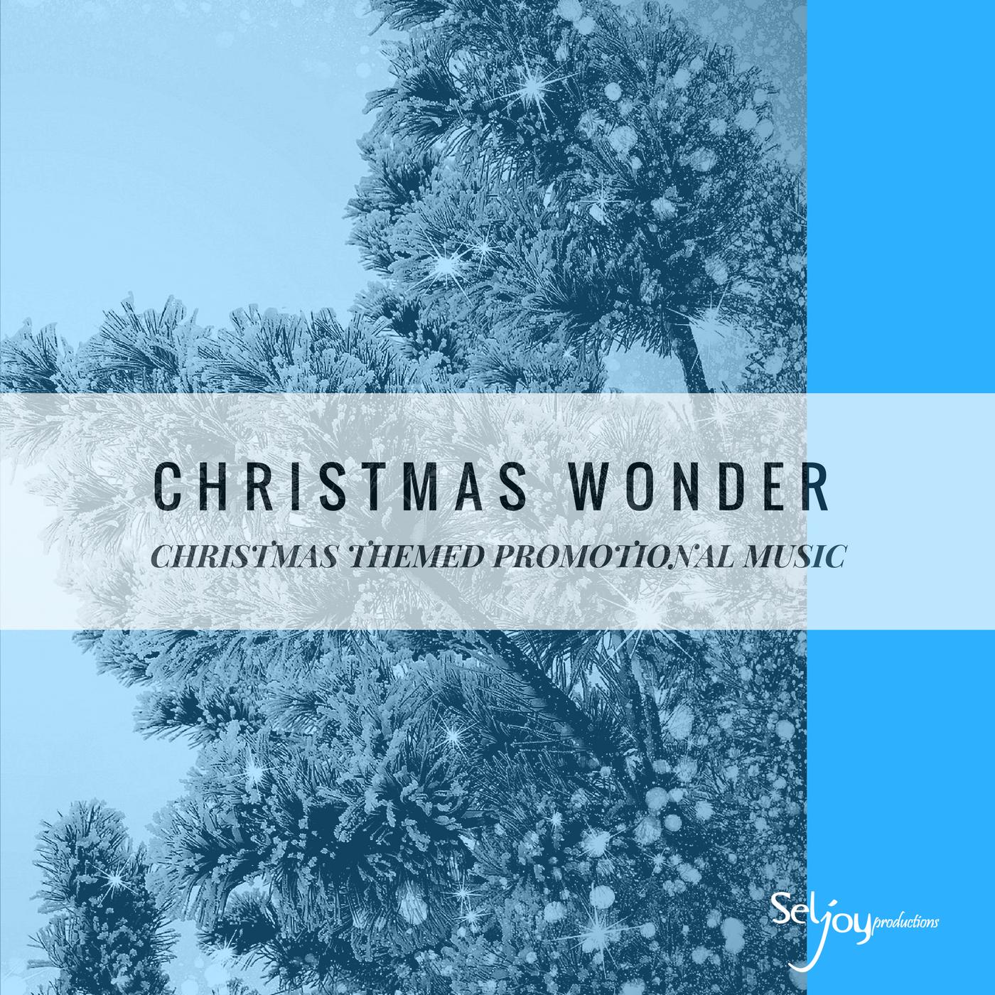 CHRISTMAS WONDER-2.png
