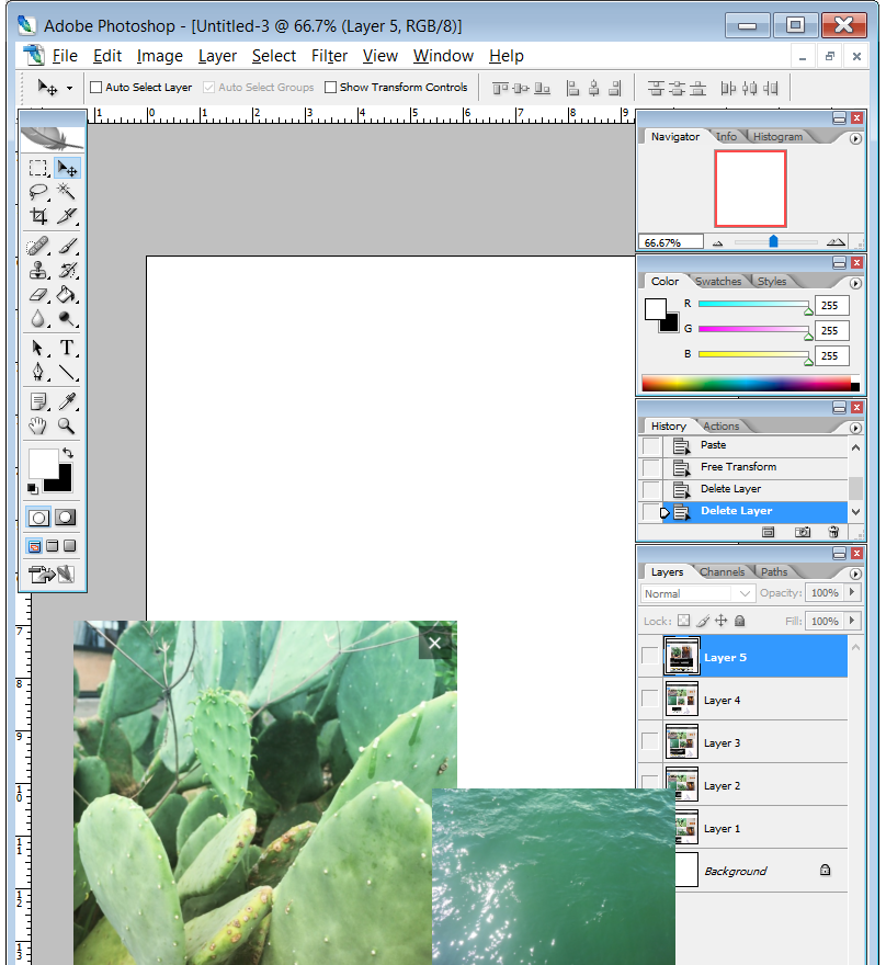 Pop-out, move and resize images that stay open over your other programs and hide at the click of a button