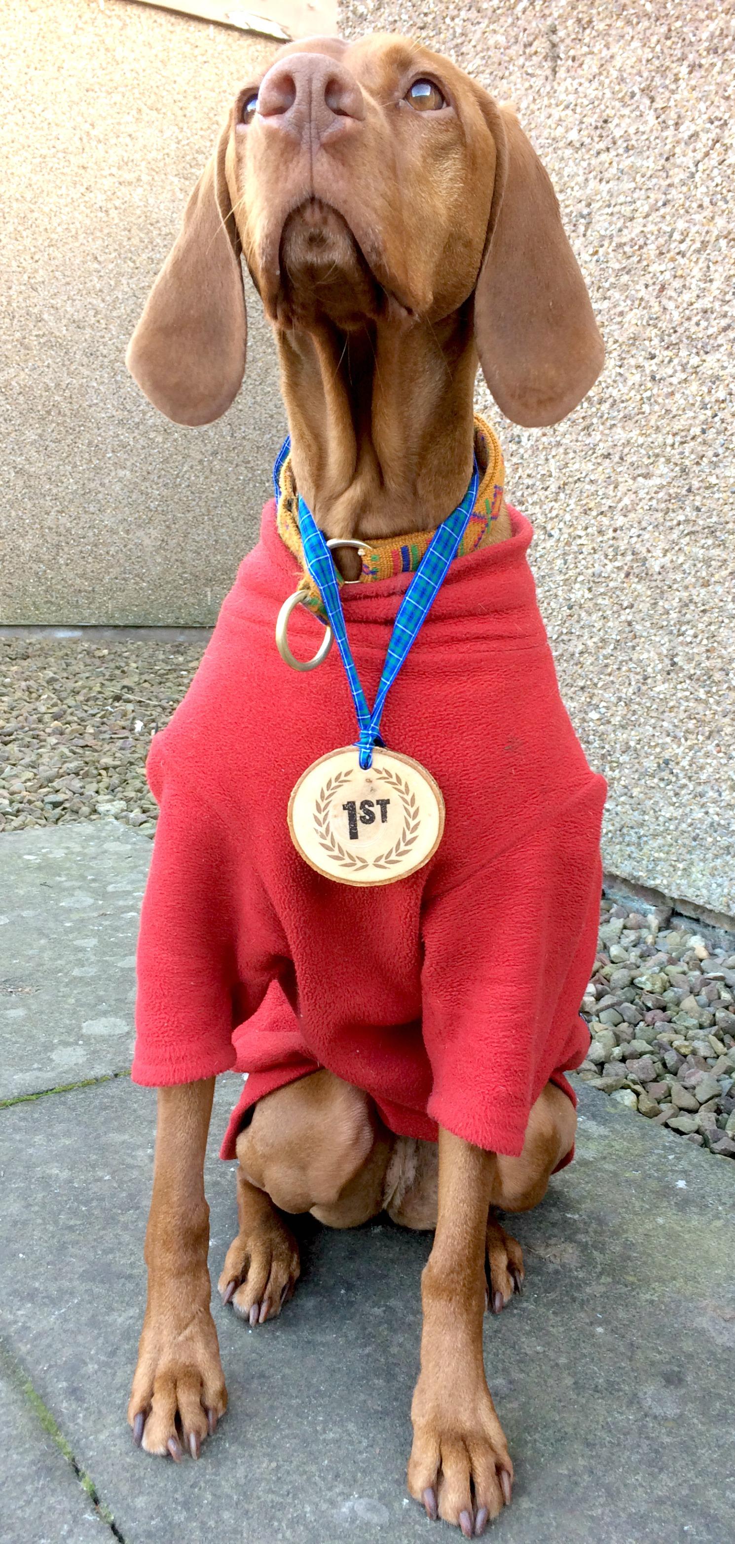 Princess Jasper is a great medal model
