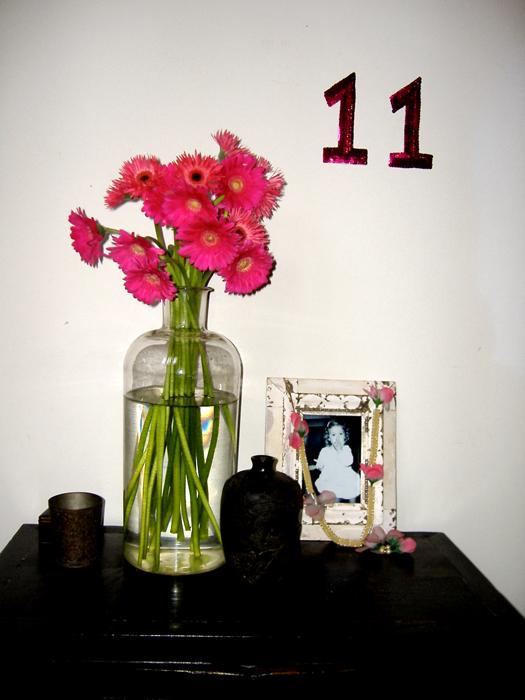 Eleven-Flowers-San Luis_adj01-sm.jpg