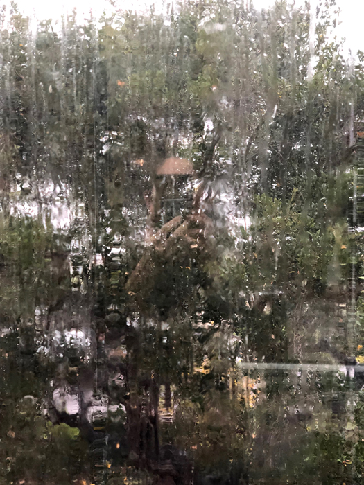 Rainy Window Abstract_adj01-sm.jpg