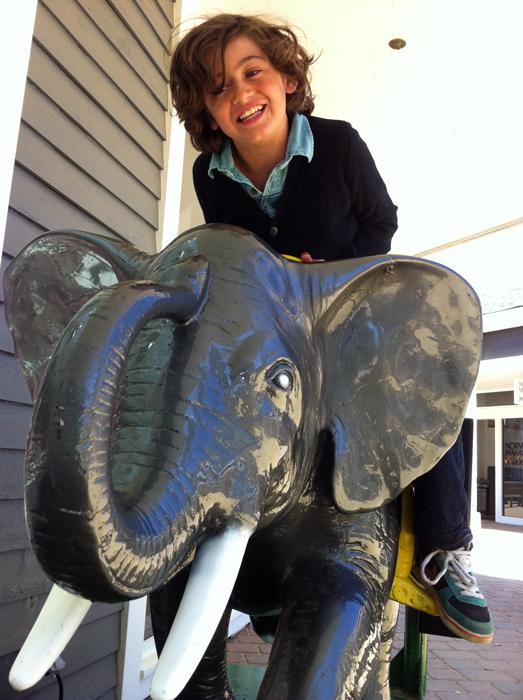 hugo-elephant-marin country mart_adh01-sm.jpg