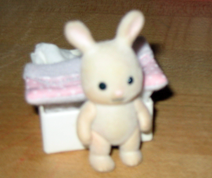 blurry rabbit_adj01-sm.jpg