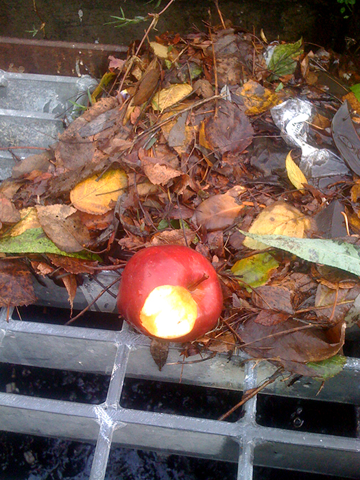 Apple with bite out of it on storm drain_adj01-sm.jpg