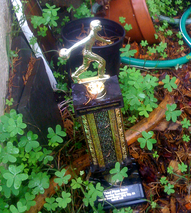 Bowling trophy in someone's front yard-Third Place_adj01-sm.jpg