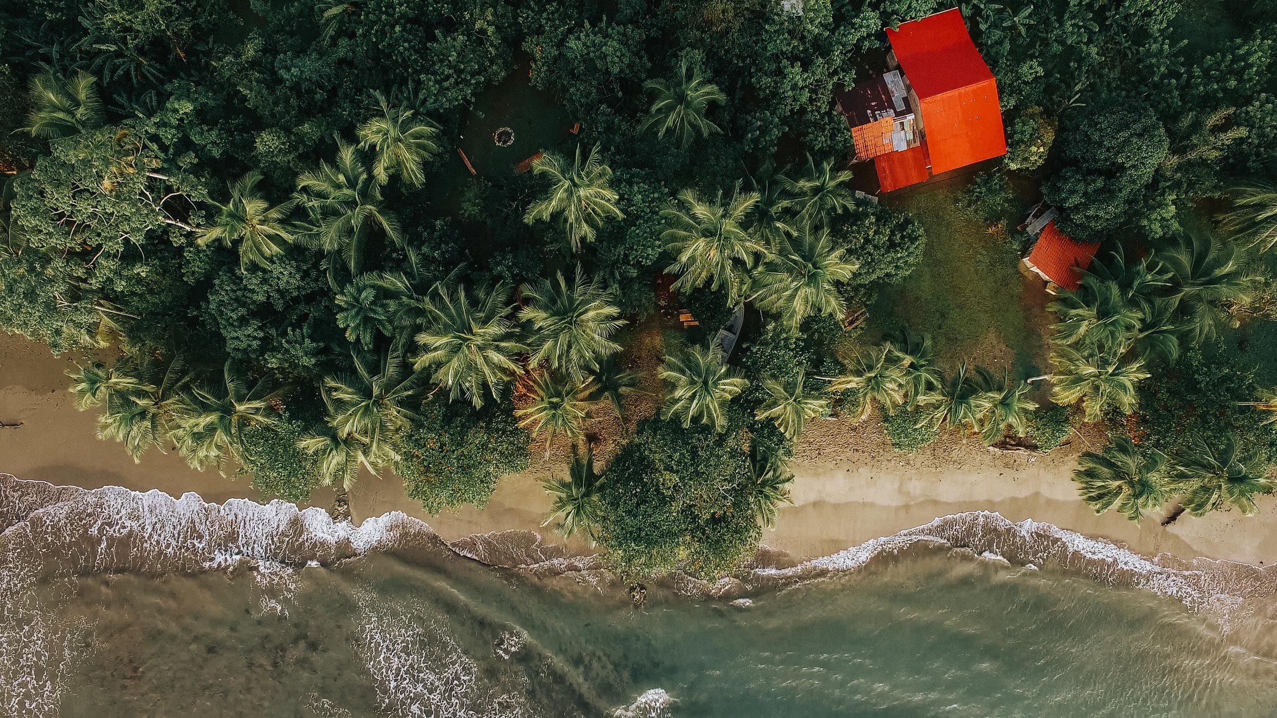 Junglize It - COSTA RICA | October 22 - 27