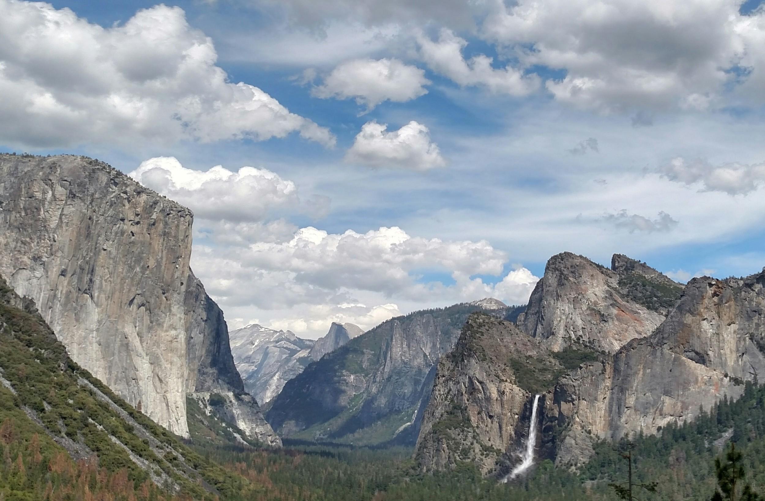 Half Dome in the background. Yosemite. 2016.www.chibeingchi.com