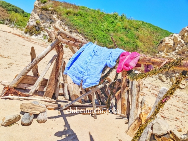 Driftwood Sculpture/Fort