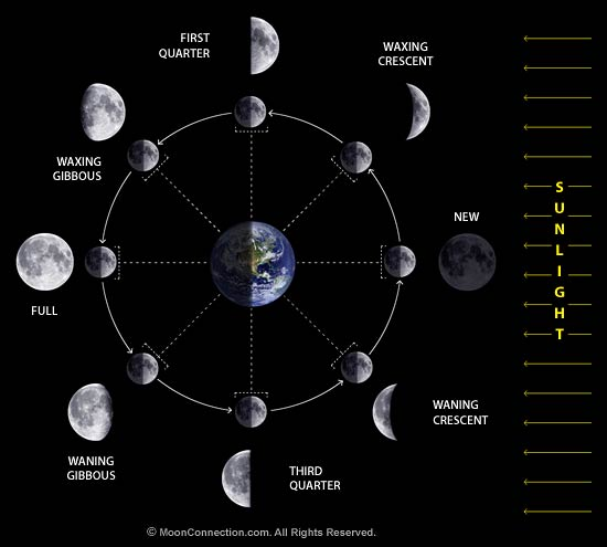 Moon phases diagram