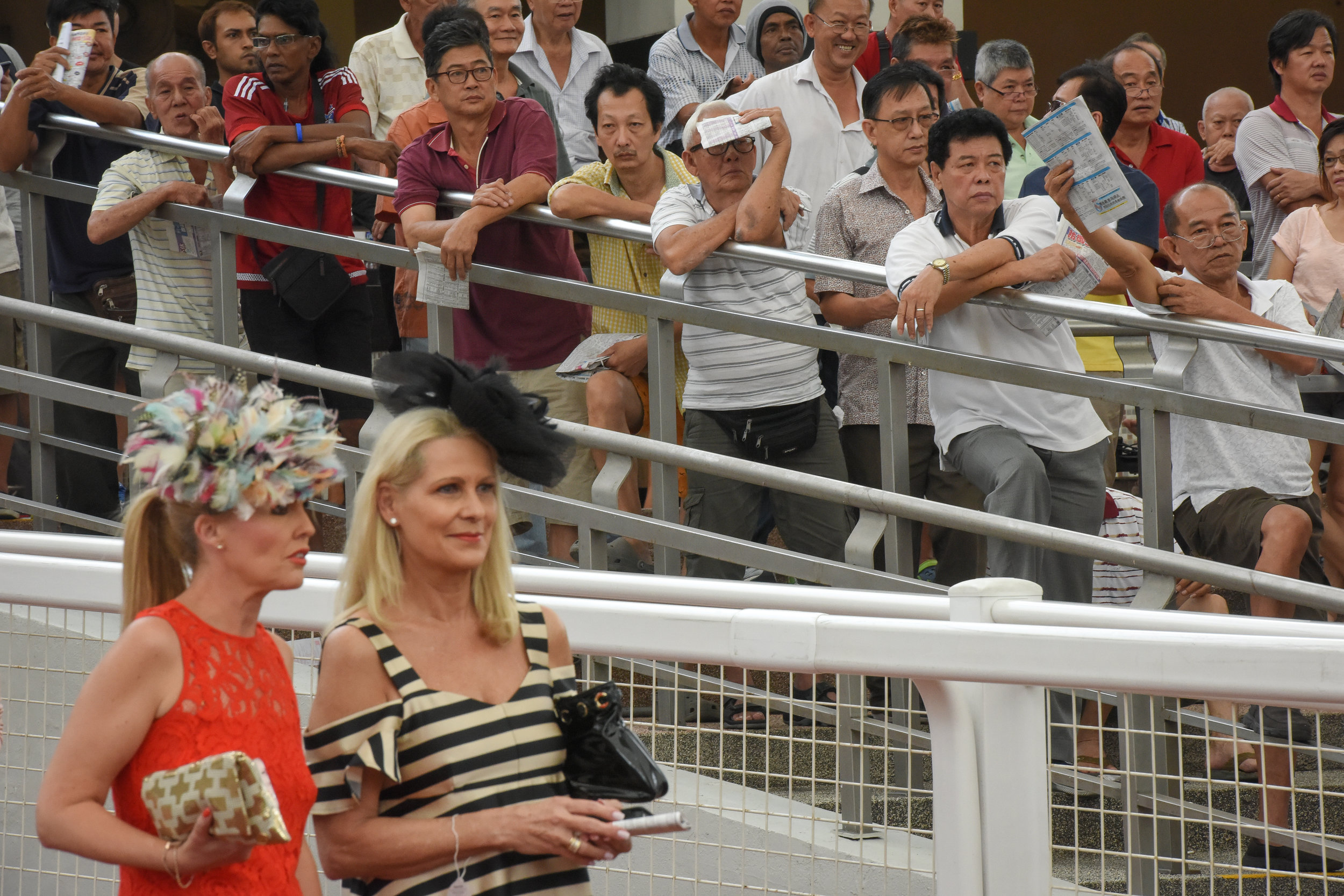 The Emirates Singapore Derby draws people from all walks of life - from glamorous women in summery frocks and feathered hats to slipper-clad punters clutching their betting guides. Spectators often look at the horses in the parade ring before placing their bets.