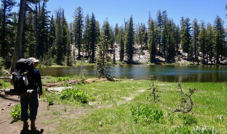 Yosemite 2.jpeg