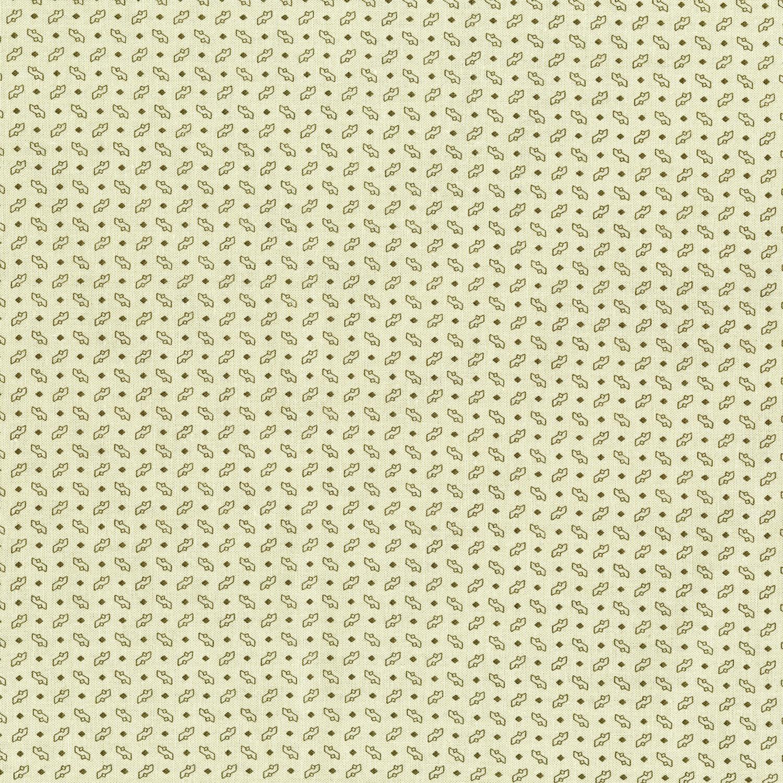 3010-001 SEEDLINGS-CREAM