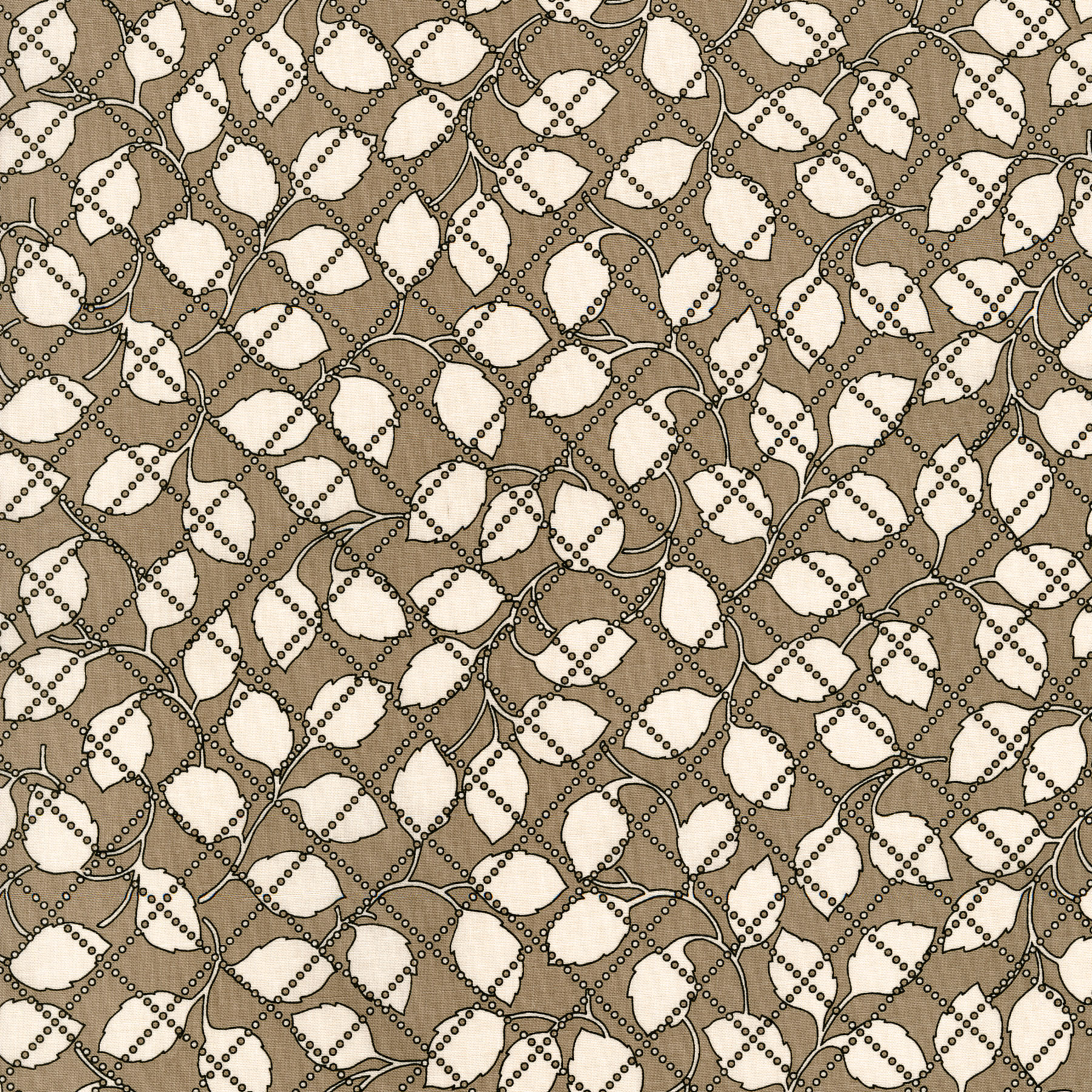 2927-003 IVY - TAUPE