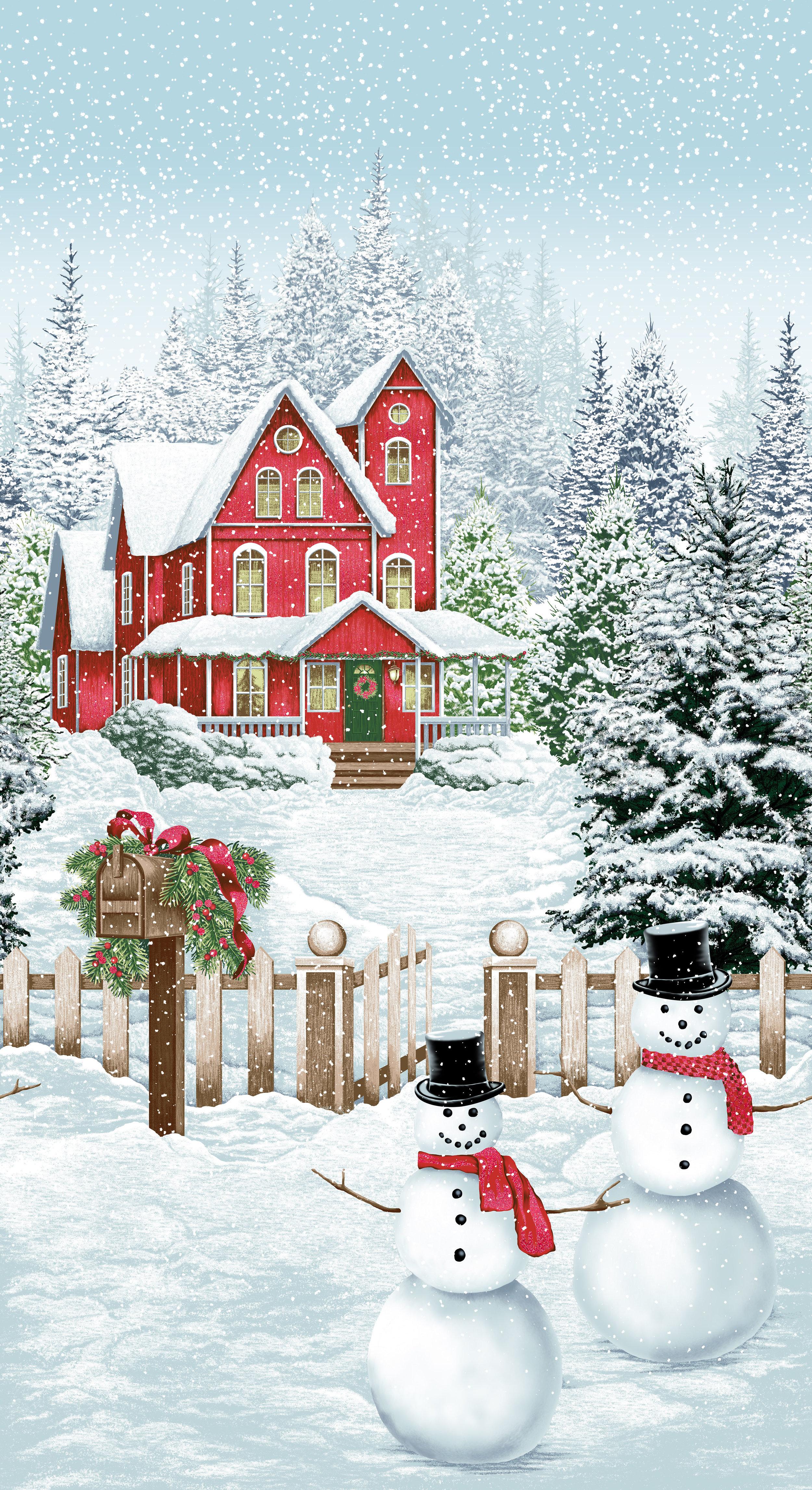 3165-001 SNOW DAY-DECEMBER