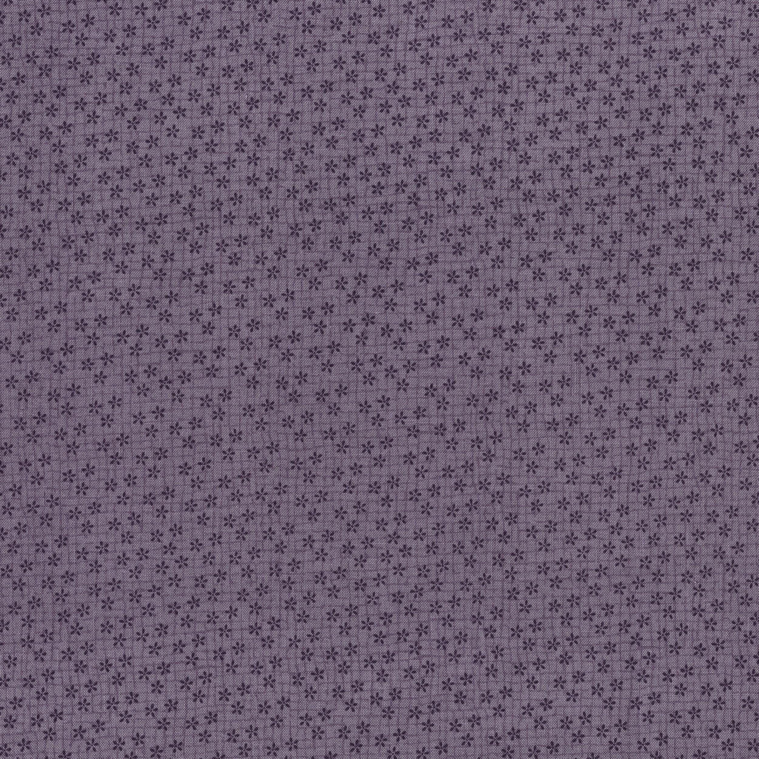 3203-001 SEASIDE DAISIES-LILAC