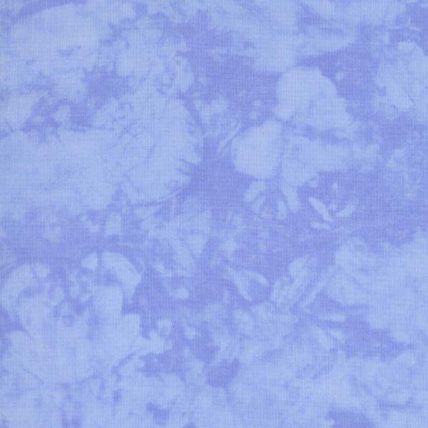 4758-035 BLUEBERRY