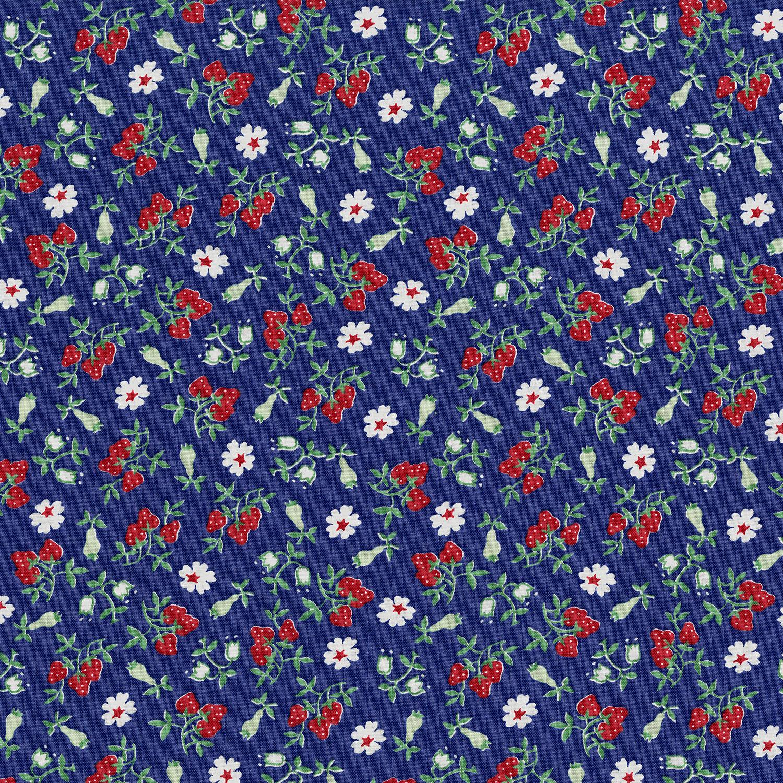 3304-003 BARBARA'S BERRIES-BLUEBERRY