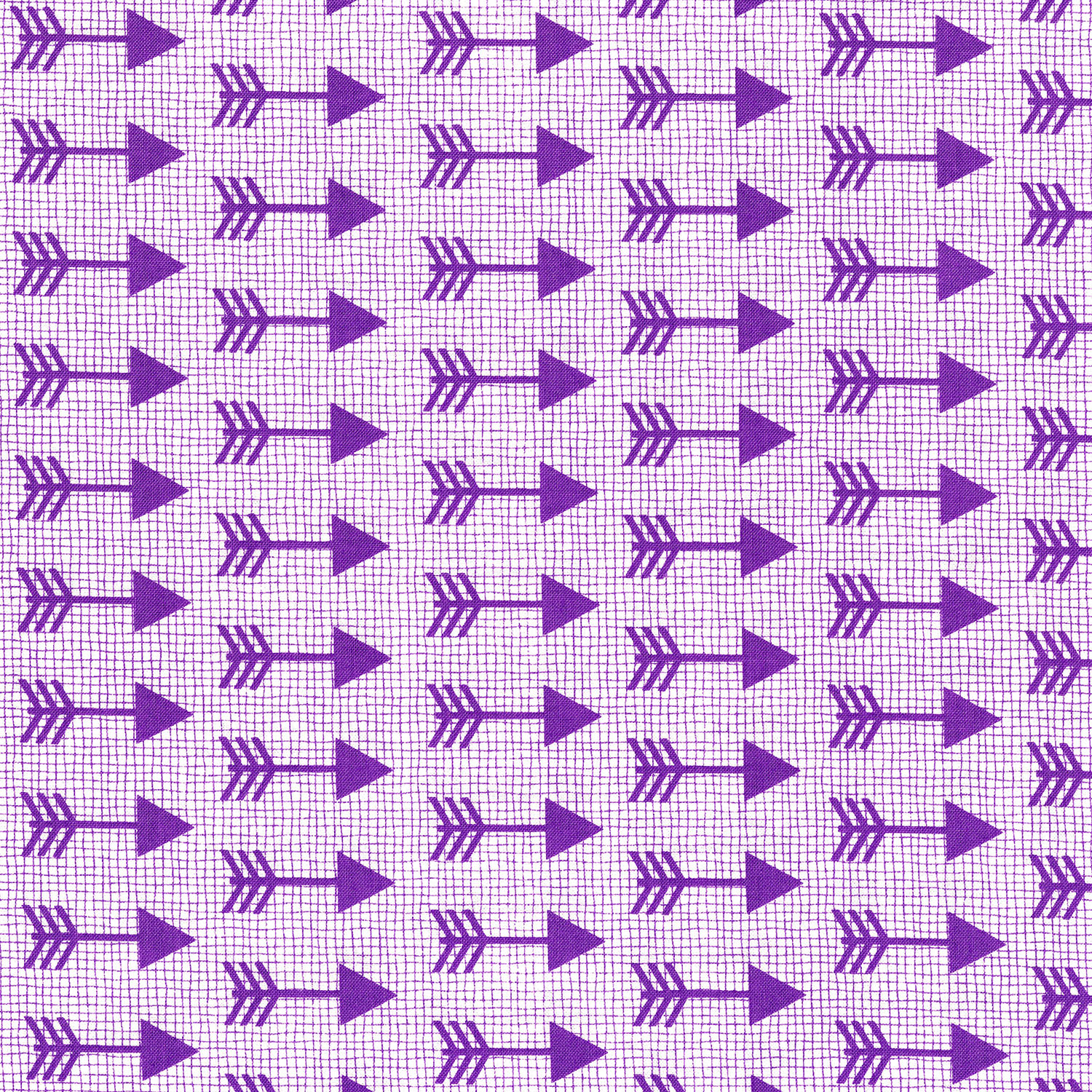 3335-004  ARROWS-PURPLE